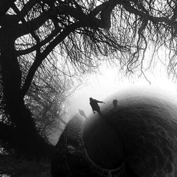 Morning Misty - Digital print by Lee Rickler